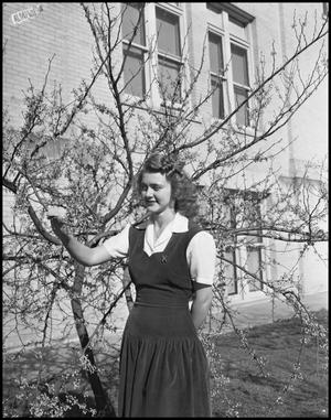 Primary view of object titled '[Margaret Cox with Tree #2]'.