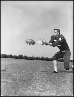 Primary view of object titled '[Football Player Robert Duty Catching a Football, September 1960]'.