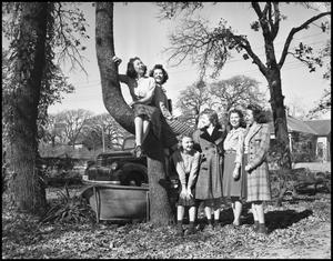 Primary view of object titled '[Kappa Theta Pi Sisters in a Tree]'.