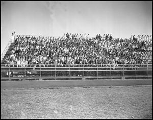 Primary view of object titled '[Stands at the Austin Football Game]'.