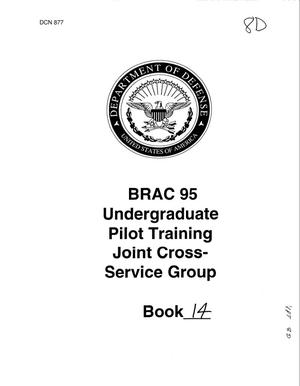 Primary view of object titled 'Undergraduate Pilot Training Program - Joint Cross Services Group'.