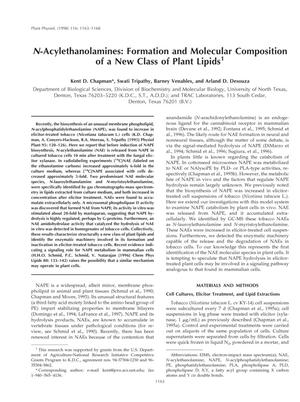 Primary view of object titled 'N-Acylethanolamines: Formation and Molecular Composition of a New Class of Plant Lipids'.