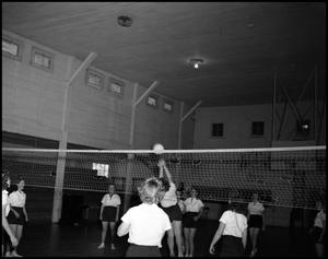 Primary view of object titled '[Women Playing Volleyball]'.