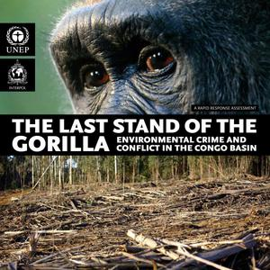 Primary view of object titled 'The Last Stand of the Gorilla: Environmental Crime and Conflict in the Congo Basin'.
