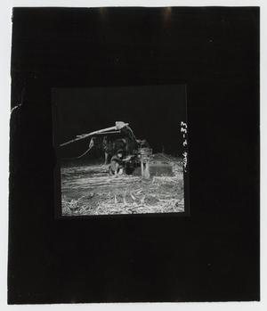 Primary view of object titled '[Grinding Cane into the Night]'.
