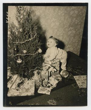 Primary view of object titled '[Douglas Clark with Christmas Tree]'.