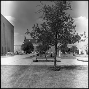 Primary view of object titled '[Willis Library and Administration Building from the southeast]'.