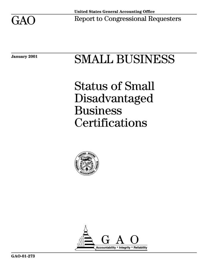 Small Business Status Of Small Disadvantaged Business