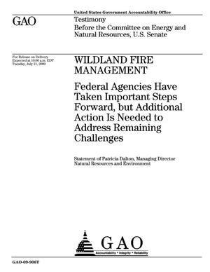 Primary view of object titled 'Wildland Fire Management: Federal Agencies Have Taken Important Steps Forward, but Additional Action Is Needed to Address Remaining Challenges'.