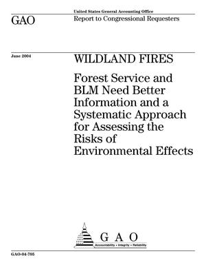 Primary view of object titled 'Wildland Fires: Forest Service and BLM Need Better Information and a Systematic Approach for Assessing the Risks of Environmental Effects'.