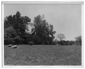 Primary view of object titled '[Future Location of Princeton Film Center Circa 1949]'.