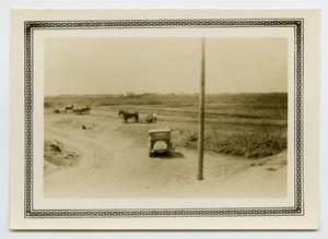 Primary view of object titled '[Automobile With a Sign]'.