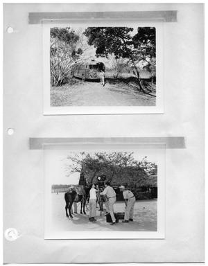 Primary view of object titled '[Man, Bus, and Trees] and [Setting up a Shot]'.