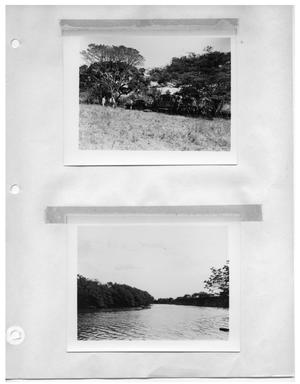Primary view of object titled '[View of Shady Campsite from Field] and [River]'.