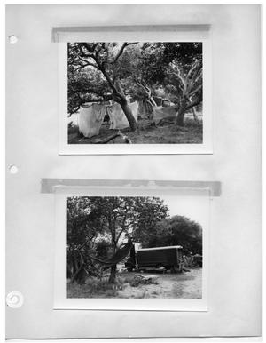 Primary view of object titled '[Shady Campsite with Tents] and [Shady Campsite]'.