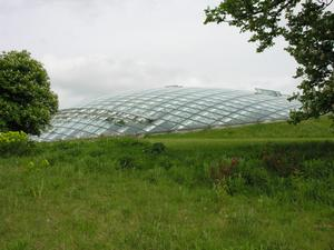 Primary view of object titled 'Great Glass House, National Botanic Garden of Wales'.