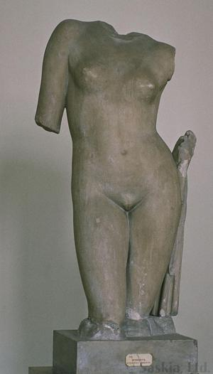 Primary view of object titled 'Torso of Aphrodite'.