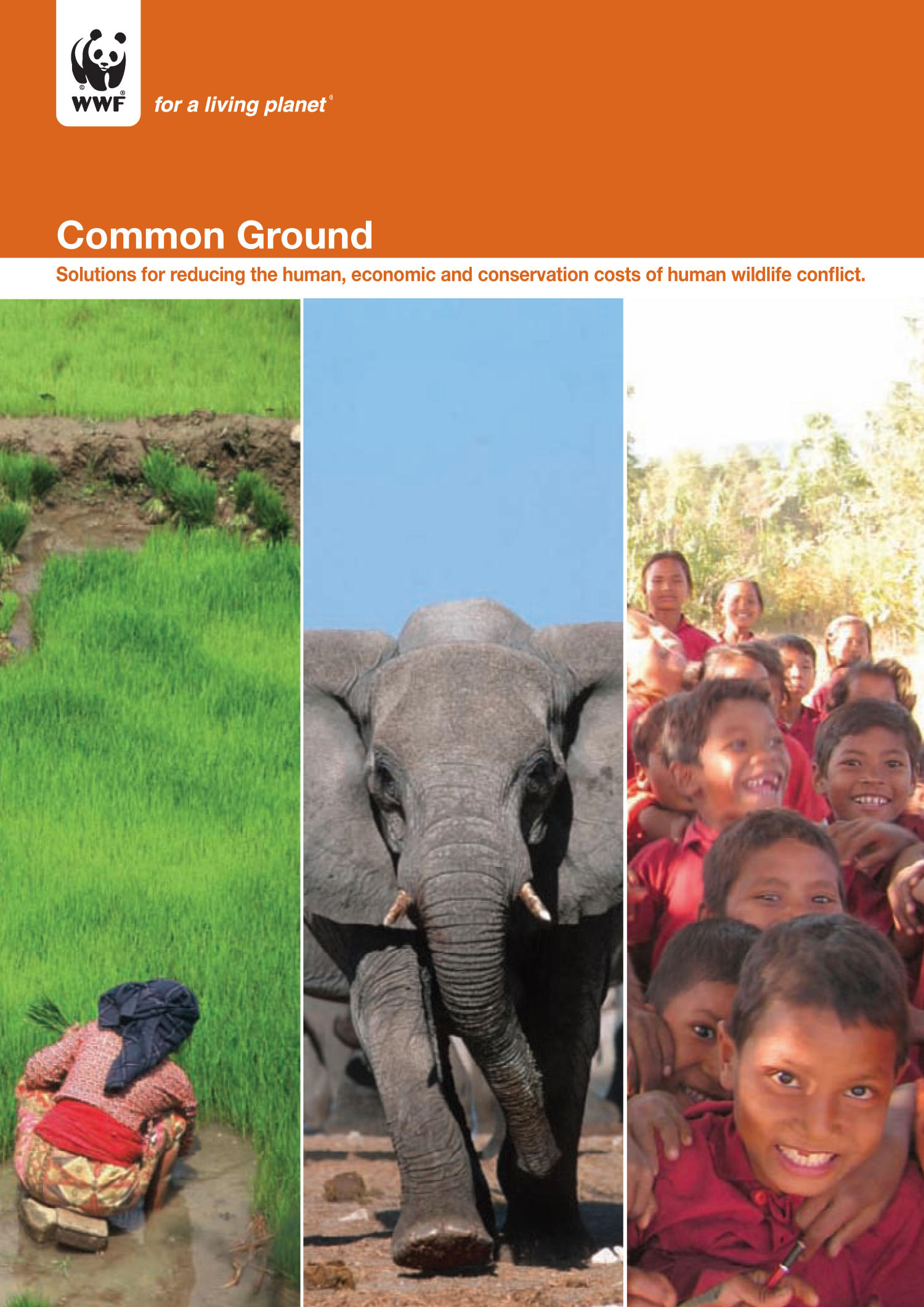 Common Ground: Solutions for reducing the human, economic and conservation costs of human wildlife conflict                                                                                                      Front Cover