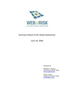 Primary view of object titled 'Summary Report of the Needs Assessment'.