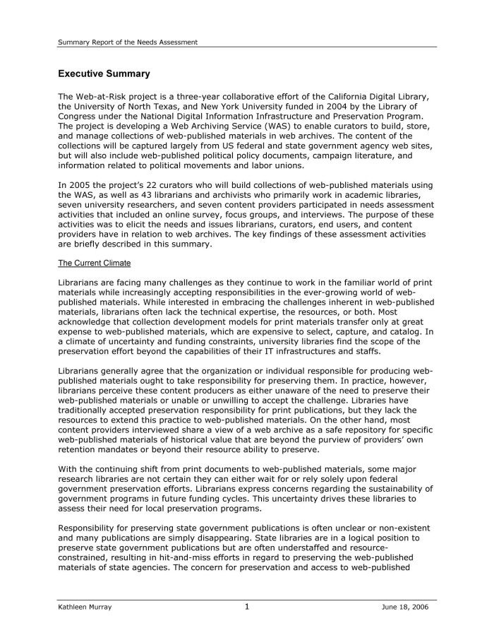 Summary Report of the Needs Assessment Page 1 – Executive Summary Format for Project Report