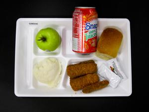 Primary view of object titled 'Student Lunch Tray: 02_20110131_02B6040'.