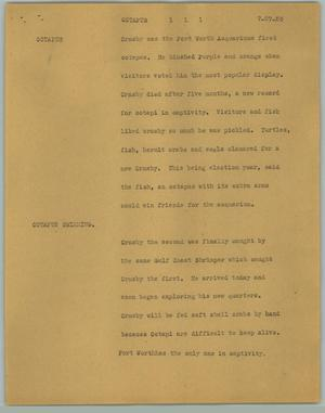 Primary view of object titled '[News Script: Octopus]'.