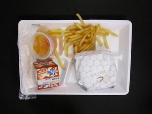 Primary view of object titled 'Student Lunch Tray: 02_20110131_02A5536'.