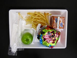 Primary view of object titled 'Student Lunch Tray: 02_20110131_02A5564'.