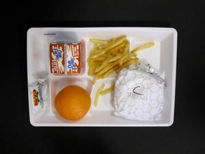 Primary view of object titled 'Student Lunch Tray: 02_20110131_02A5569'.