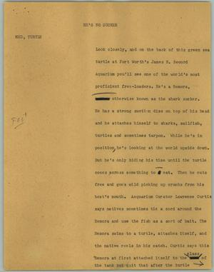 Primary view of object titled '[News Script: He's No Sucker]'.