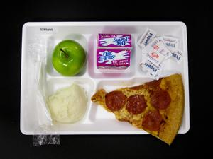 Primary view of object titled 'Student Lunch Tray: 02_20110131_02B5995'.