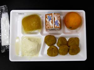 Primary view of object titled 'Student Lunch Tray: 02_20110131_02B6015'.
