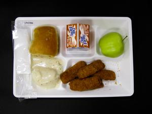 Primary view of object titled 'Student Lunch Tray: 02_20110131_02B6050'.