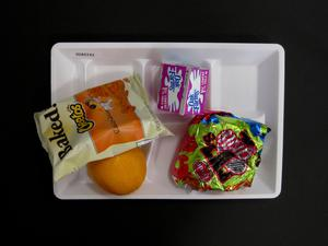 Primary view of object titled 'Student Lunch Tray: 02_20110208_02A5743'.