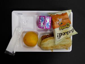 Primary view of object titled 'Student Lunch Tray: 02_20110208_02A5763'.