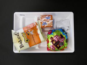 Primary view of object titled 'Student Lunch Tray: 02_20110208_02A5778'.