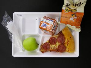 Primary view of object titled 'Student Lunch Tray: 02_20110208_02A5801'.