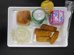 Primary view of object titled 'Student Lunch Tray: 02_20110208_02B6124'.