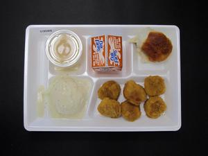 Primary view of object titled 'Student Lunch Tray: 01_20110216_01B5968'.