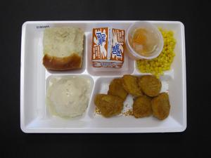 Primary view of object titled 'Student Lunch Tray: 01_20110216_01B5989'.