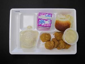Primary view of object titled 'Student Lunch Tray: 01_20110216_01B5990'.