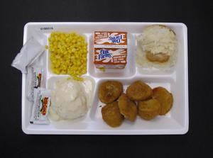 Primary view of object titled 'Student Lunch Tray: 01_20110216_01B6016'.