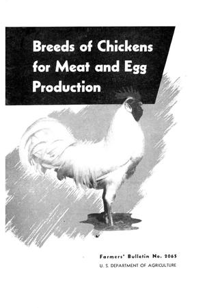 Primary view of object titled 'Breeds of chickens for meat and egg production.'.