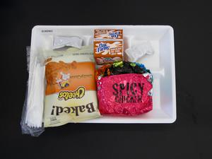 Primary view of object titled 'Student Lunch Tray: 01_20110217_01A5563'.