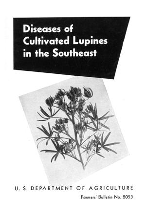Primary view of object titled 'Diseases of cultivated lupines in the Southeast.'.