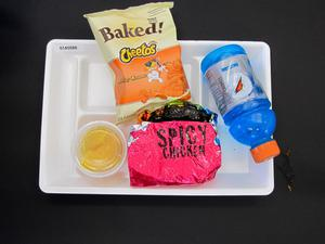 Primary view of object titled 'Student Lunch Tray: 01_20110217_01A5588'.