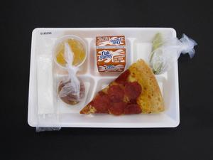 Primary view of object titled 'Student Lunch Tray: 01_20110217_01A5599'.