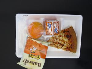 Primary view of object titled 'Student Lunch Tray: 01_20110217_01A5696'.