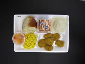Primary view of object titled 'Student Lunch Tray: 01_20110217_01B6026'.