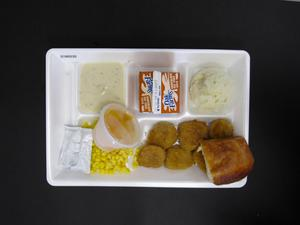 Primary view of object titled 'Student Lunch Tray: 01_20110217_01B6030'.
